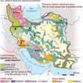 Iran le poids des minorites