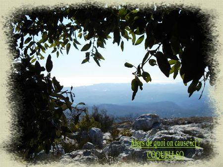 blog coqueliso1