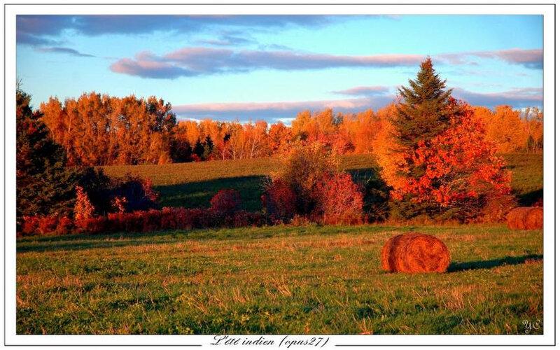 Photo de Chasseur de temps (foupix.com)