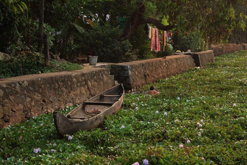 Un bon bain dans le canal