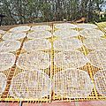 Galettes de riz au soleil