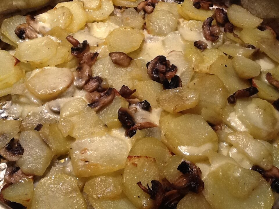 Gratin pommes de terre champignons mozzarella