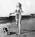 1947_20thCenturyFoxPublicity_dog_041_1