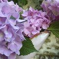 Dernier bouquet d'été