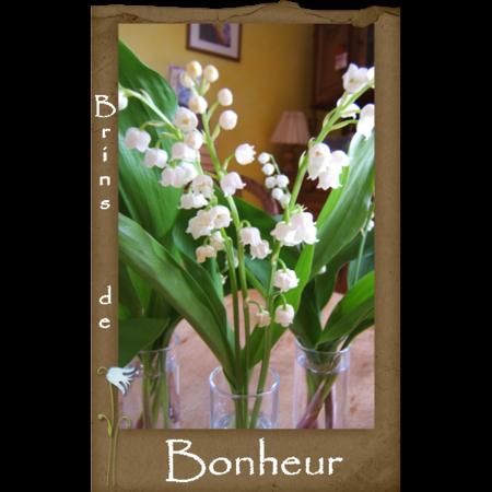 Brins_de_bonheur