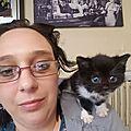 L'ataxie du chaton