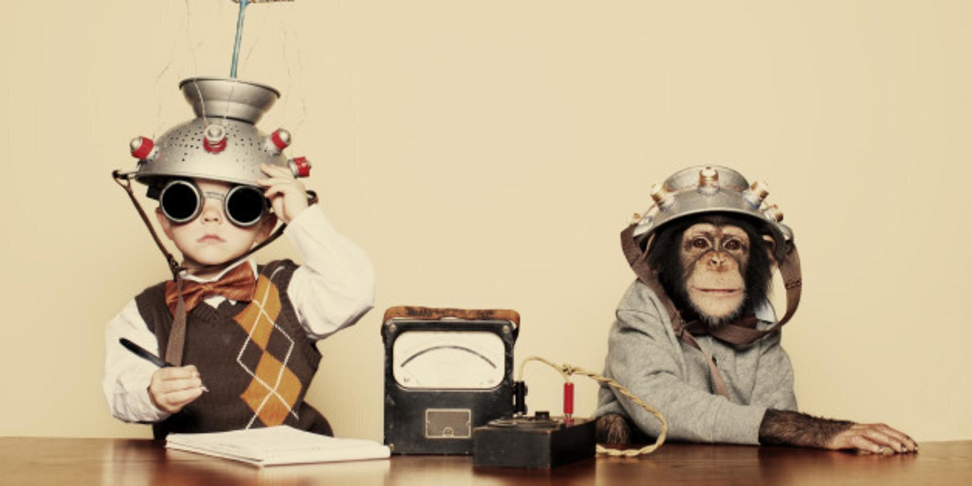 Le mystère de l'intelligence animale...