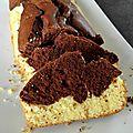 Savane (gâteau marbré)