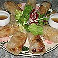 Nems au porc carotte échalote vermicelle chinois sauce soja
