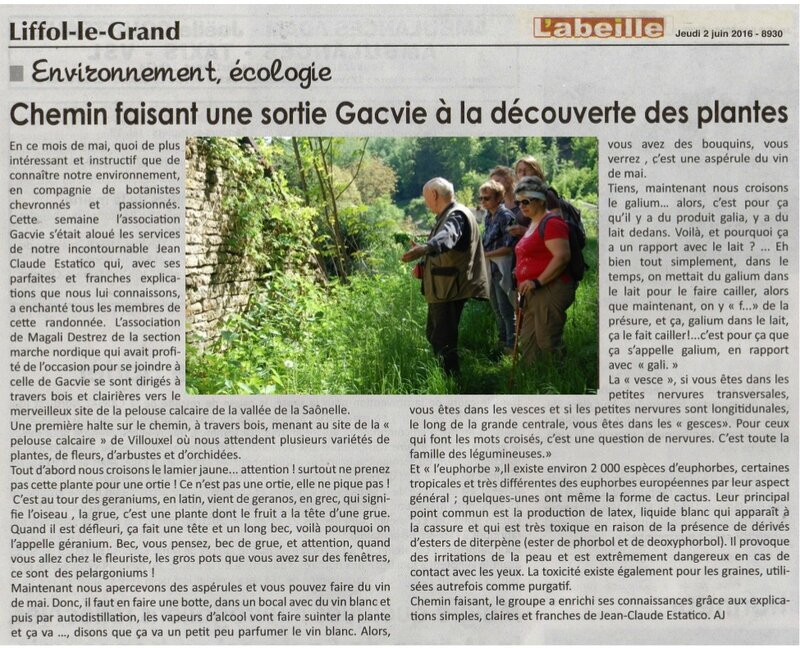 Article du 2 juin 2016 (2)