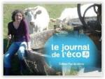 LE JOURNAL DE L'ECO