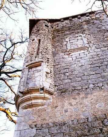 vouthon_chateau_de_La_Chaise_fev_08__17_