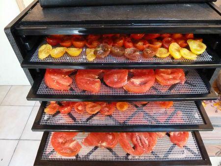 tomates séchées 2 (1)