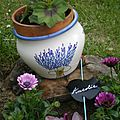 Cache Pot Bouquet de Lavande
