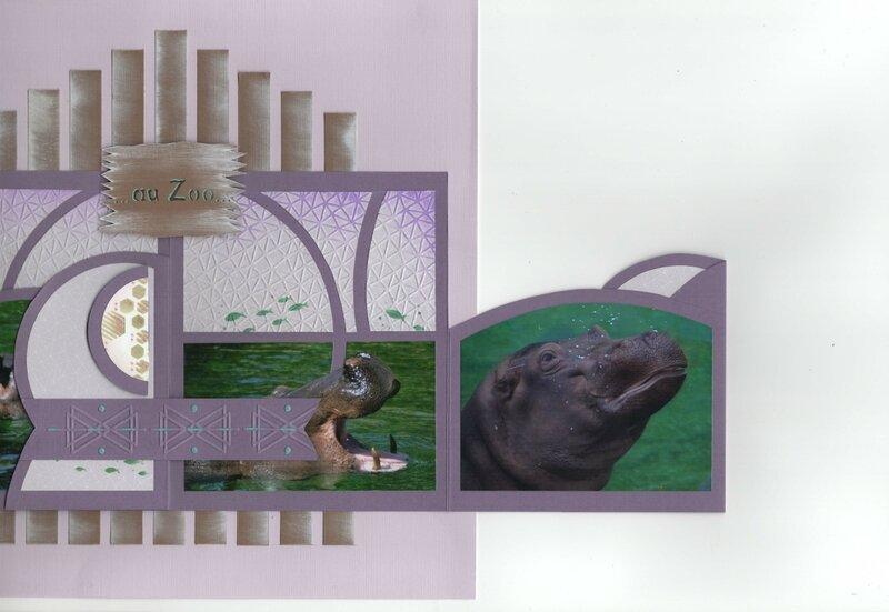 hippopotames 5