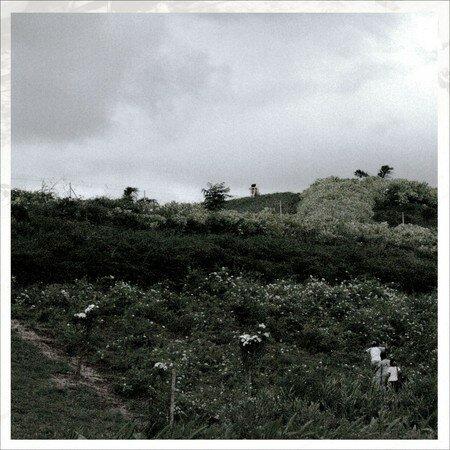 Fille sur une colline