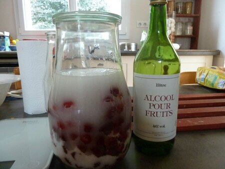 fruits  l'eau de vie (2)
