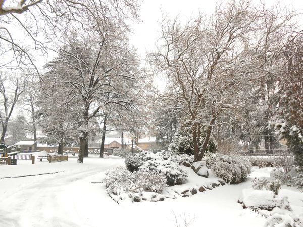 neige (3) 15 janv 2013