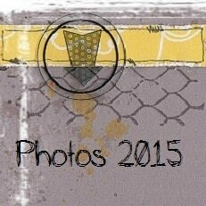 couverture album blog 2015