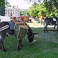 Nos activités : médiévales de nonancourt