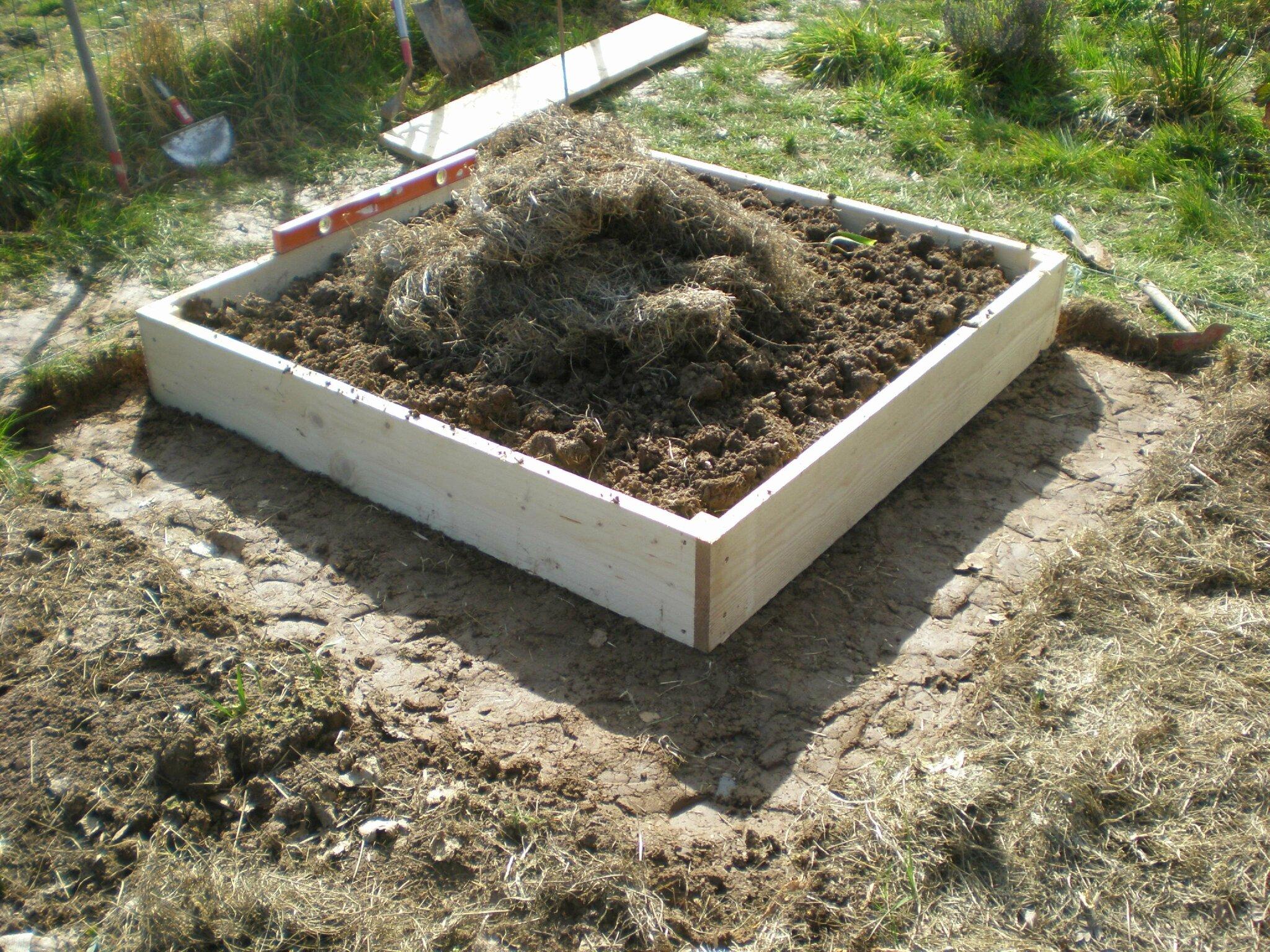 Creation du potager en carres 2eme partie boutures de for Creation jardin potager