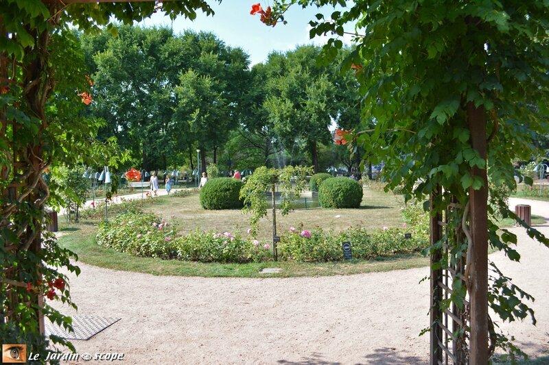 Nancy - Parc de la Pépinière Royale - la Roseraie