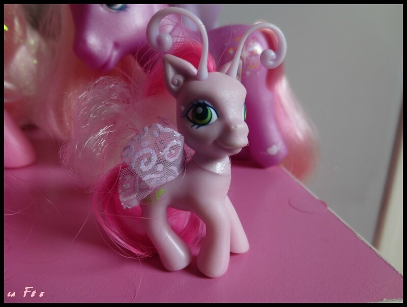 collection petit poney (5)