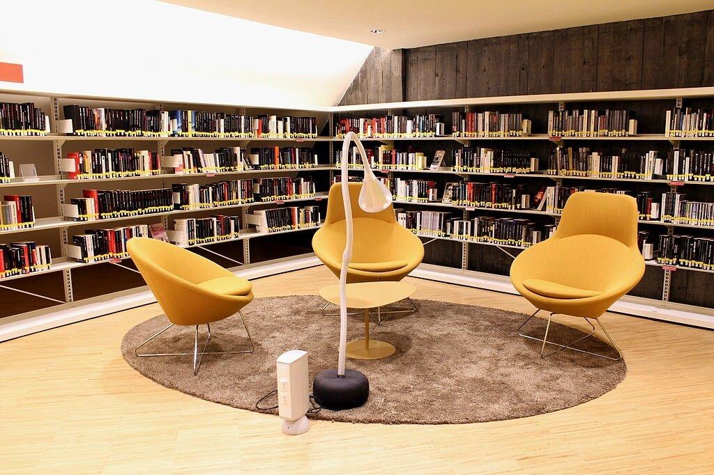Enquête sur les Publics et les usages des bibliothèques municipales en 2016