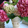 bouquet d'hortensias