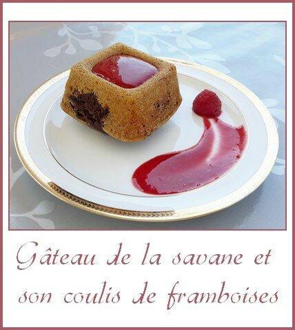 Gâteau de la savane et son coulis de framboises