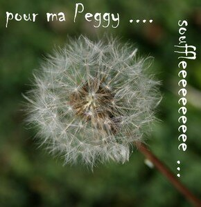 pourPeg