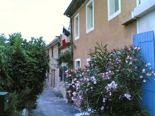 mon petit nid en france,avec le drapeau francais!