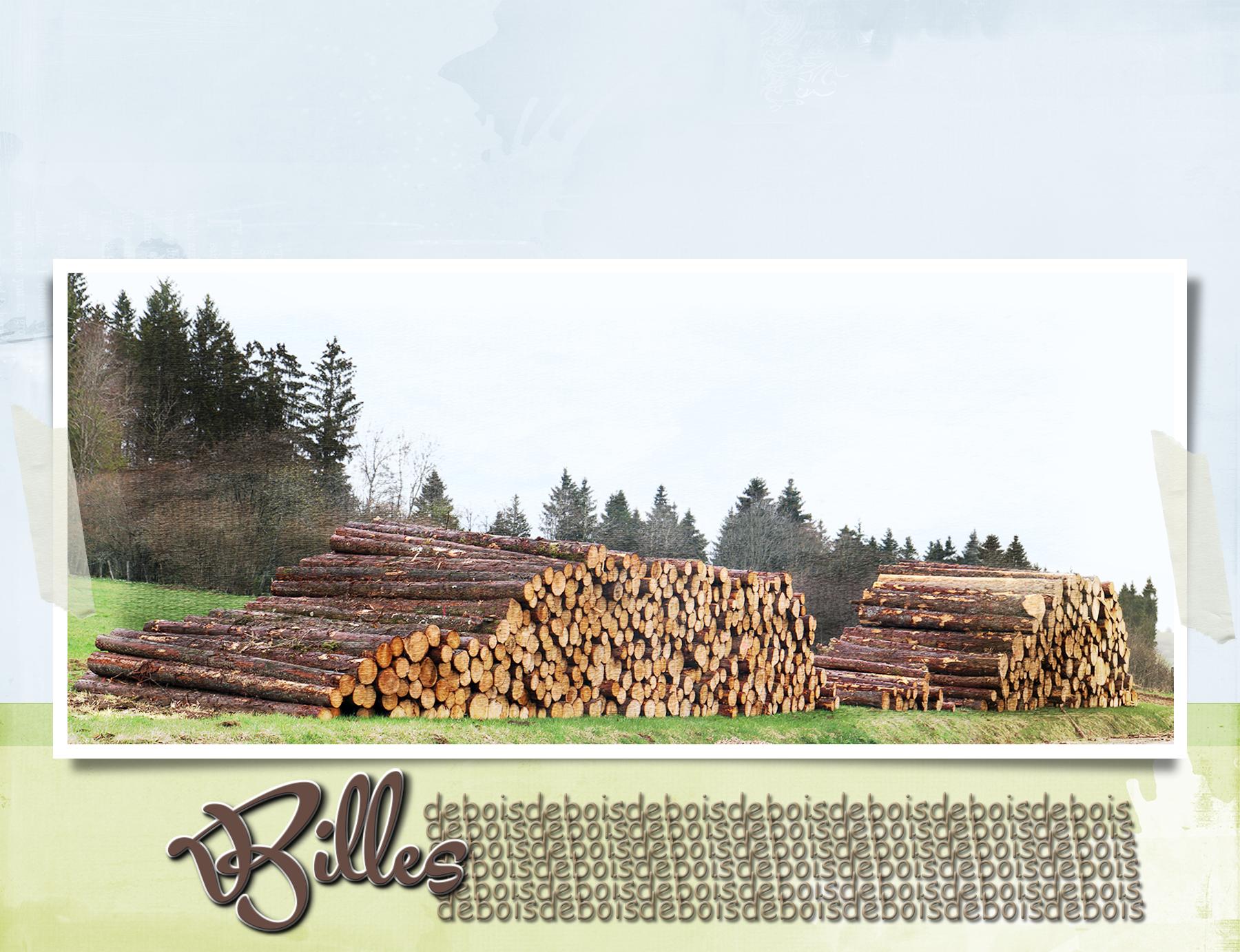 Billes de bois