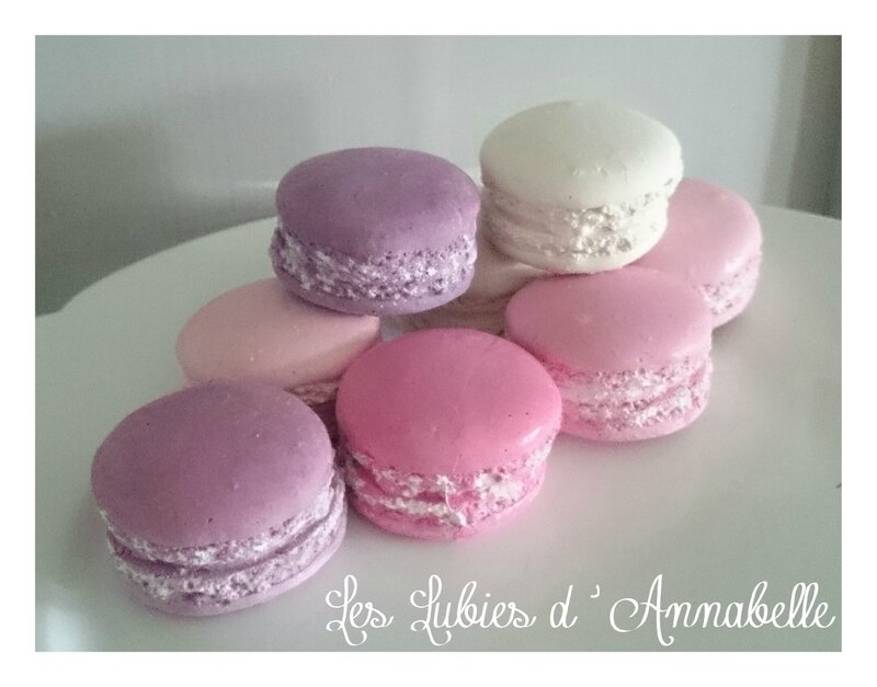 Macarons plâtres multicolores