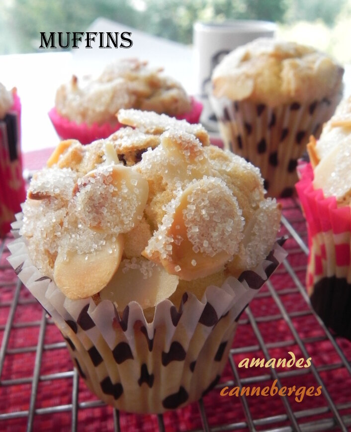 MUFFINS_AMANDE_CANNEBERGE_2