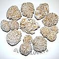 Gypse rose de sable lot de 10 n°1
