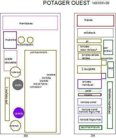 plan potager ouest au 16 mai 2012