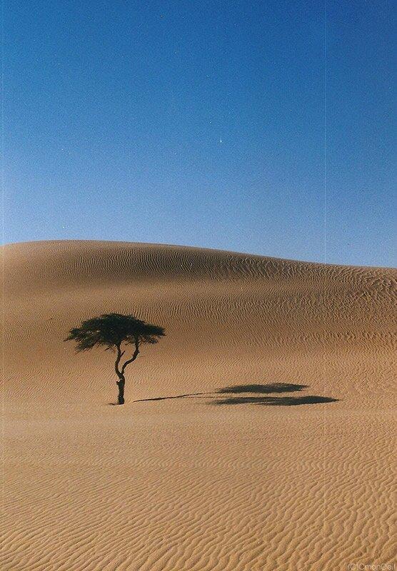 mauritanie05