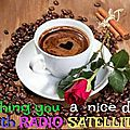 RADIO SATELLITE CAFE2