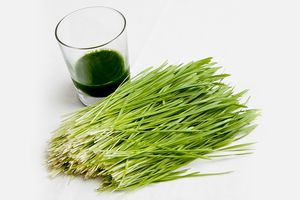 wheatgrass-and-juice