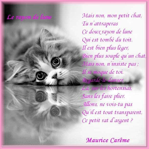 poemes-de-maurice-careme-le-rayon-de-lune_4186855-XL