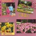 Au parc de tulipes à Morges