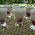 Panacotta light aux fruits rouges