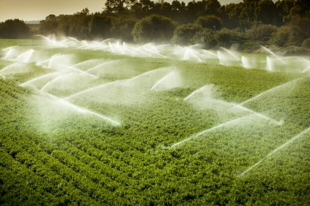 eau_agriculture_iStock_000019952631_Small