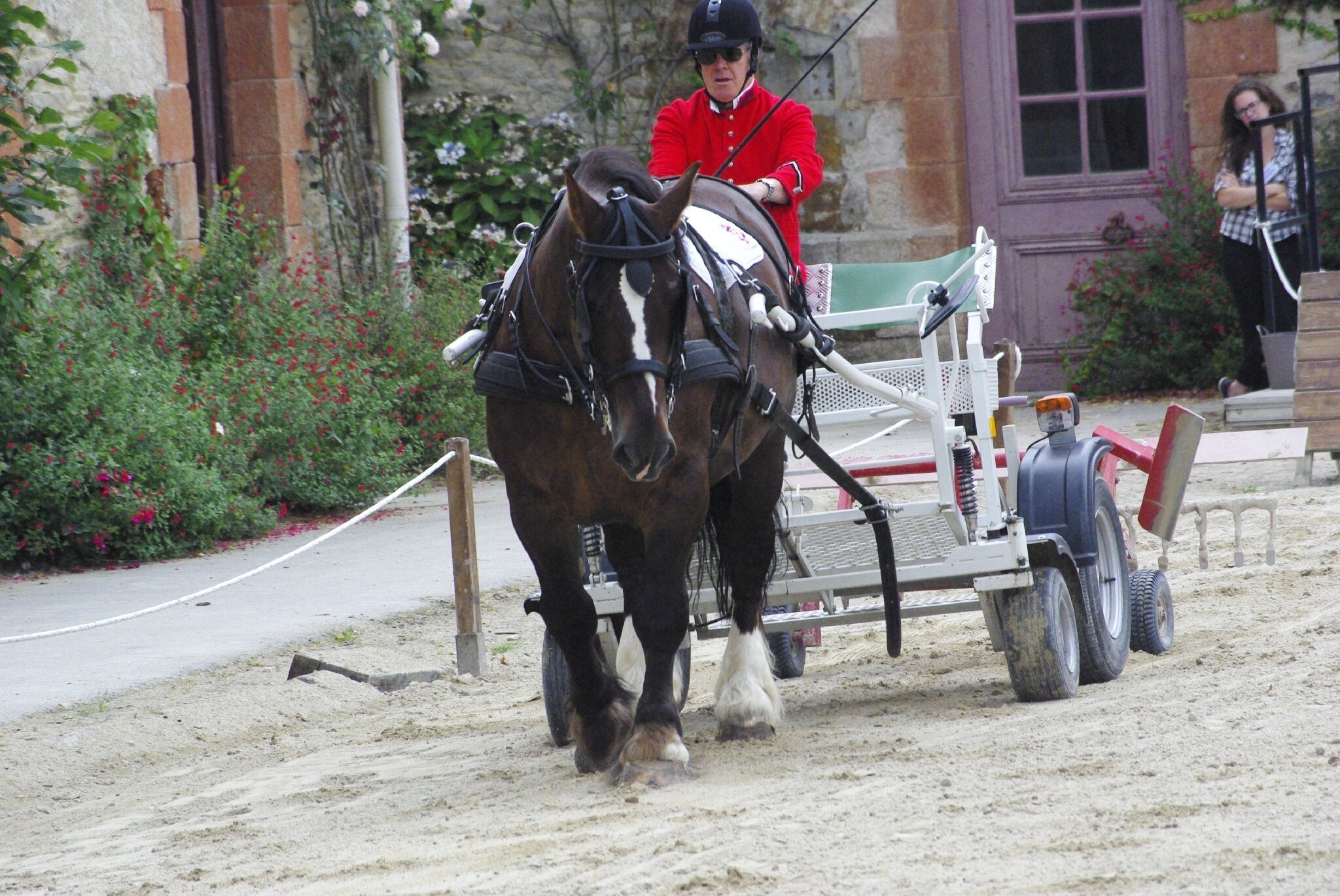 spectacle haras hennebont