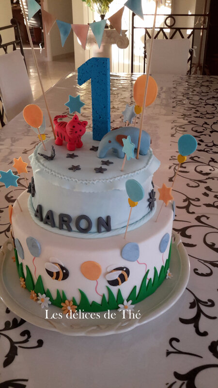 Anniv Aaron 1 an Nov 2017 (22)