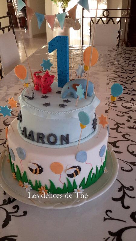 Anniv Aaron 1 an Nov 2017 (22)