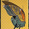 Carte envol de papillon