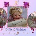 Maddison adoptée