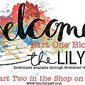 Dsd blog hop à the lilypad